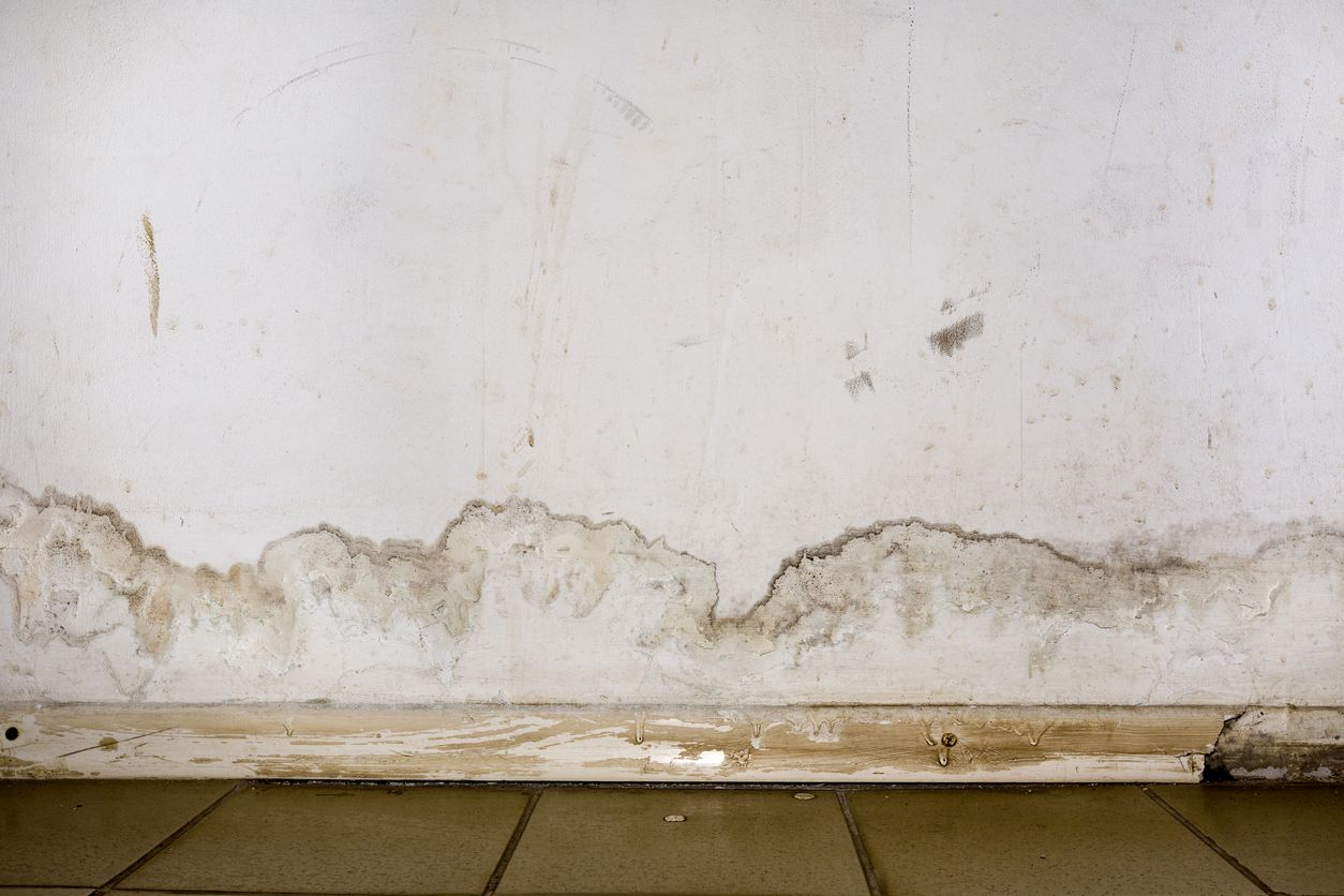 Picture of mold on wall in Azusa residence
